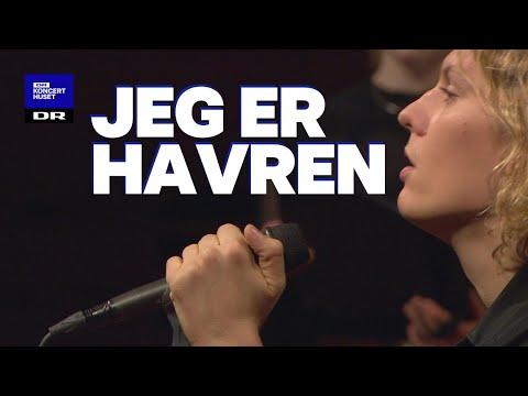 Din Danske Sang #4: Jeg er havren