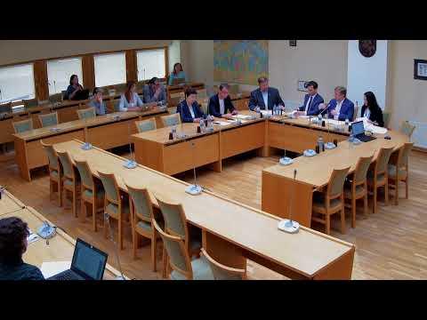 2019-07-17 Kultūros komiteto posėdis
