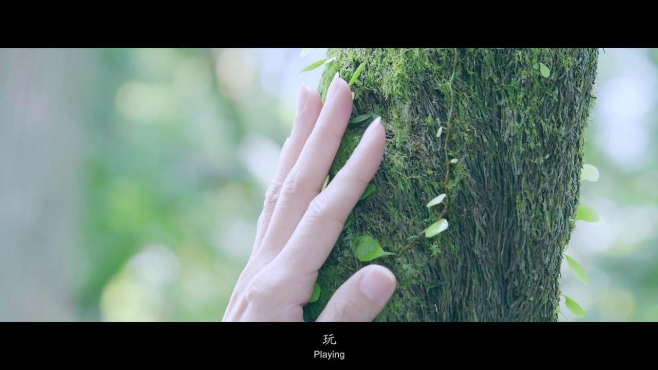 Somnambulist Trailer