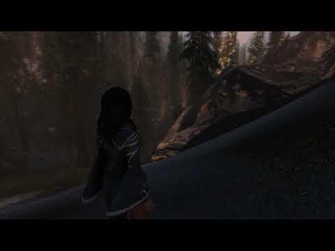 The Elder Scrolls V  Skyrim Special Edition (modded)  