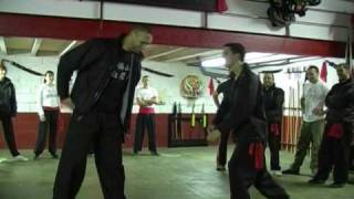 FAT SAN PAK MEI // 4 (Techniques) 佛山 白眉拳