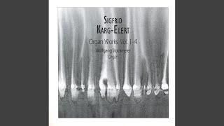 Kaleidoscope in E Minor, Op. 144