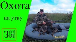 Видео Охота на утку в 2016