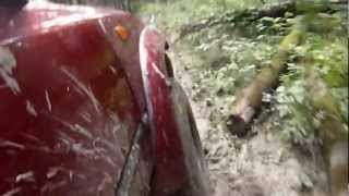 Красногорск, лес, боковой порез(Просадило берёзой колесо., 2012-07-30T13:18:06.000Z)