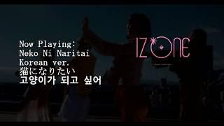 Iz*one (아이즈원) - neko ni naritai/猫になりたい/고양이가 되고 싶어 (korean version) kpop goes punk!