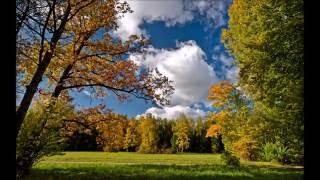Осень в гости пришла