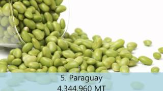 Top 10 soybean producing countries