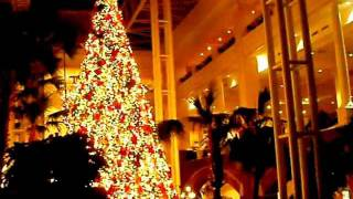 Opryland Hotel Christmas Tree (Vid 35) Thumbnail