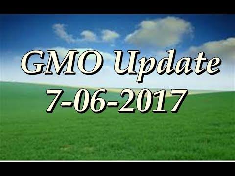 GMO Update 7-6-2017