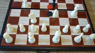 Шахматы. Все проблемы всегда решались. 29.07.2016