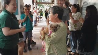 Last Dog To Be Adopted Gets Cheerful Sendoff After 'Clear The Shelter' Campaign