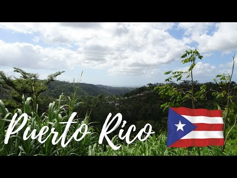 Life is AMAZING in Puerto Rico || Vlog #54 of 365