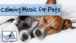 Calming Music For Pets. Dog Music To Help With Grooming, Crate Training! Helped Millions!