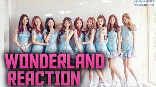 구구단(gugudan) - Wonderland MV Reaction