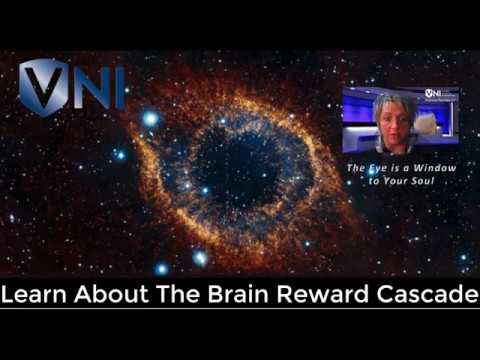 Understanding the Brain Reward Cascade - A Science Breakthrough!