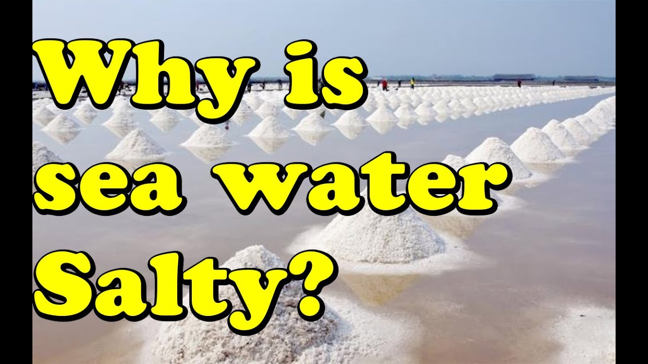 why sea water is salty Can ocean water be saltier in some areas and less salty in others a customer e-mailed us with a very interesting question why is the ocean salty.