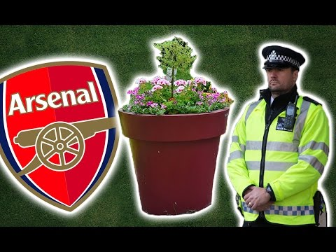 The Drunk Arsenal Players Who Stole A Plant Pot On Christmas Eve