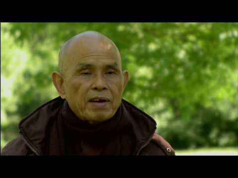 Clip 1 - Celebrating Earth Day Pioneers - Dai Dong - International Conference on The Environment