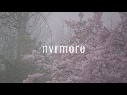 nvrmore - you're the only one that wants me around | lyrics