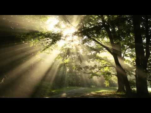 Nearer, My God, to Thee (Dieve, arčiau tavęs)