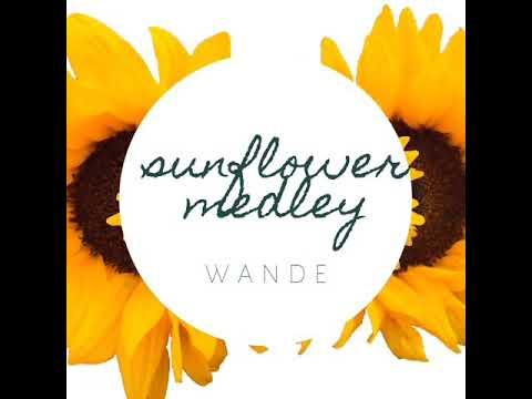 Sunflower x Beautiful - Post Malone, Swae Lee, Bazzi & Camila Cabello (@OMGitsWande Medley Cover)