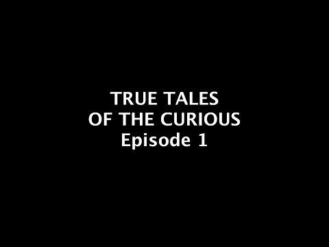 The Curious Tale of Fi-Rex!