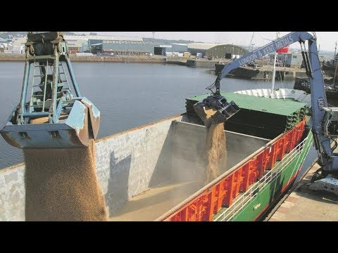 After Loading Grain Cargo