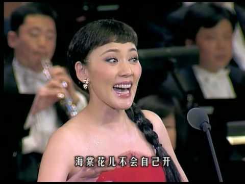Fang Qiong 方琼 / Jiang Dawei 蒋大为 - 敖包相会