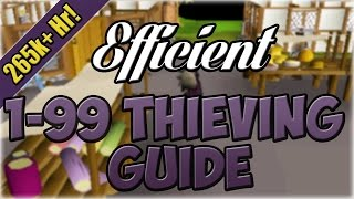 Efficient 1-99 Thieving Guide | Oldschool 2007 Runescape