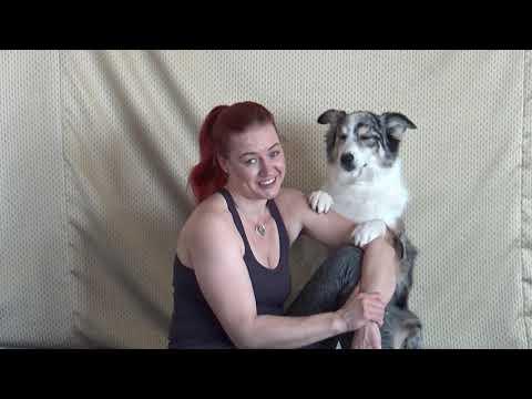 Doga during isolation - fun dog tricks/fails
