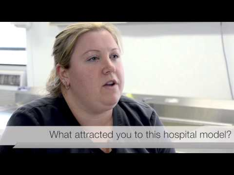 What attracted you to this hospital model?