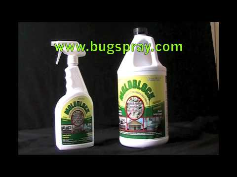 Mold Block Fungus Preventer