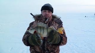ОКУНЬ за 1КГ, зимняя рыбалка, Балансир, ...