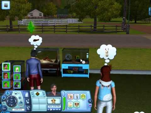 Sims  How Do I Walk My Dog