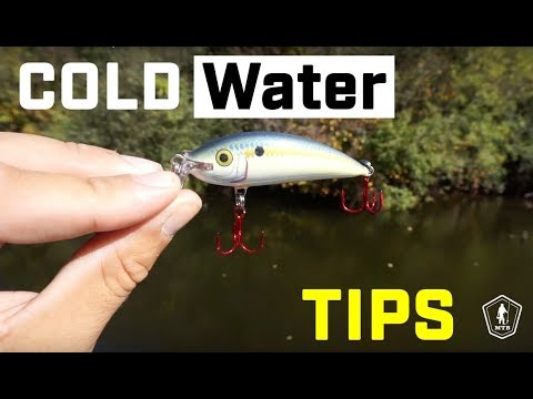 Cold Water Bass Fishing Tips With Ben Milliken!