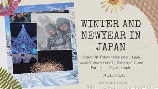 Winter at Japan | New Year at …