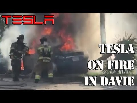 tesla-slams-into-a-tree-and-burst-in-flames