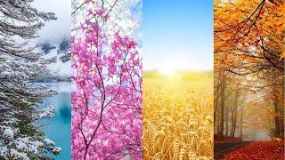 Вивальди - Времена Года / Vivaldi - Four Seasons