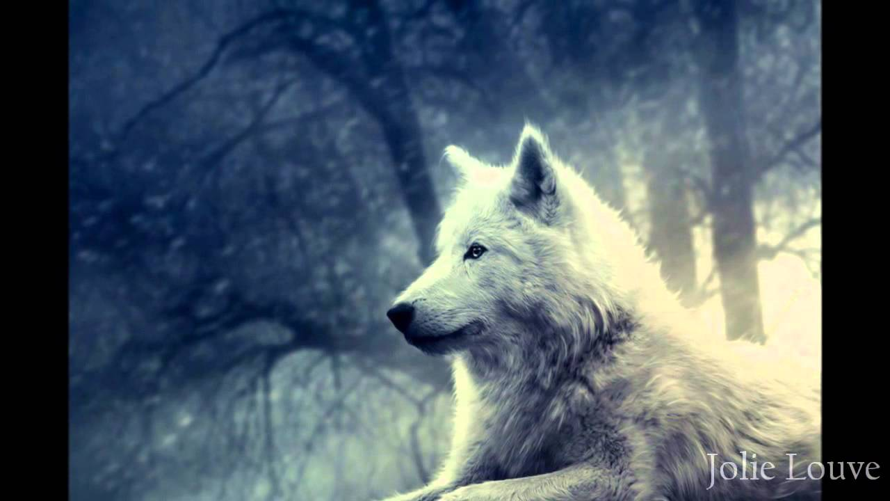 Blue Eyes Song Girl Wallpaper Wolf Blood Hymn Of Wolves Youtube