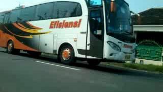 Klakson telolet bus Efisiensi Jaya