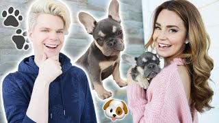 Surprising My Girlfriend With A New Puppy!