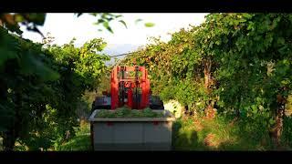 Gemin Spumanti - Video Promo Aziendale