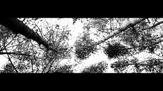 Depeche Mode-Halo (Goldfrapp Remix)