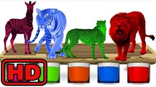 Kid -Kids -Wild Animals Bathing Colors Fun | Colors for Children to Learn with Wild Animals