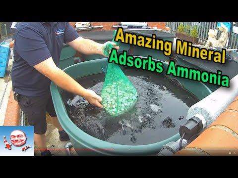 Amazing Mineral That Absorbs Ammonia.