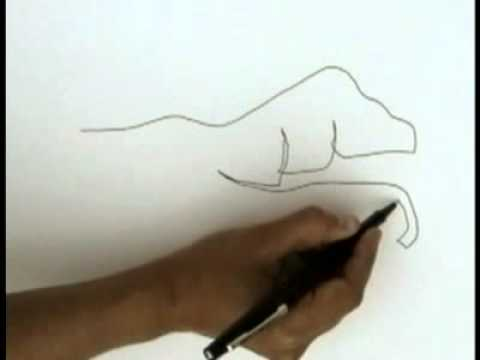 Contour Line Drawing People : Blind contour drawing tutorial youtube
