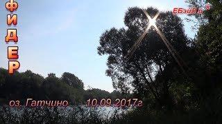 фидер 10. 09. 2017г оз Гатчина