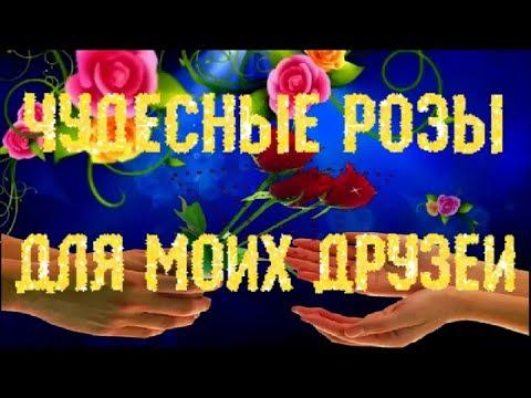 пожелания моим друзьям