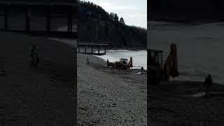 Фото Поиск золота на пляже трактором и мд ольгинка