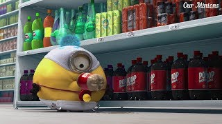 Minions go for shopping - Despicable Me